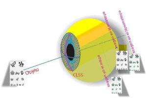 Formación de la imagen de un objeto según el estado refractivo del ojo