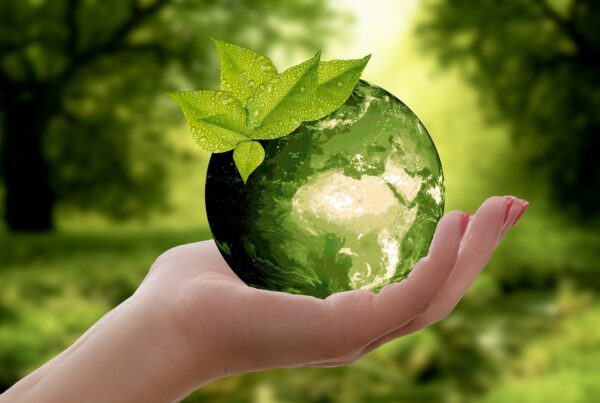 Cuidamos de nuestro planeta