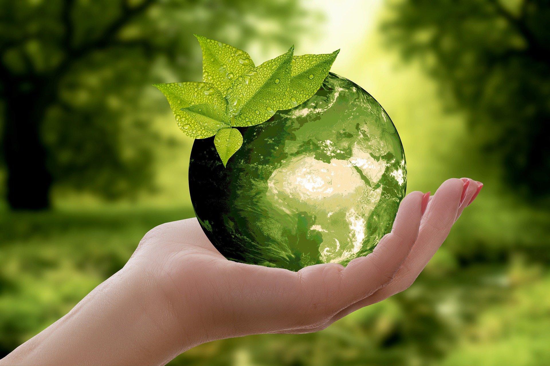 Nos adherimos a la Comunidad Acción por el Clima de Naciones Unidas